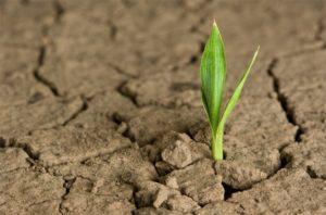 InnDEA València lanza un concurso de proyectos innovadores contra el cambio climático