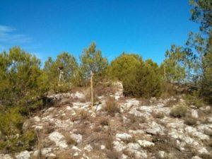 Red terrena desplegada durante una jornada de pruebas en la Sierra de Mariola. / Álvaro Araujo.